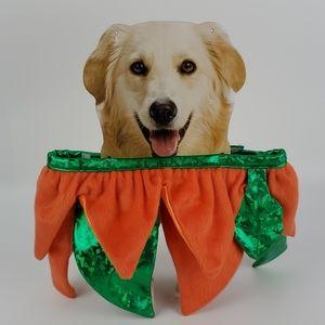 Halloween Dog Costume Size M/L